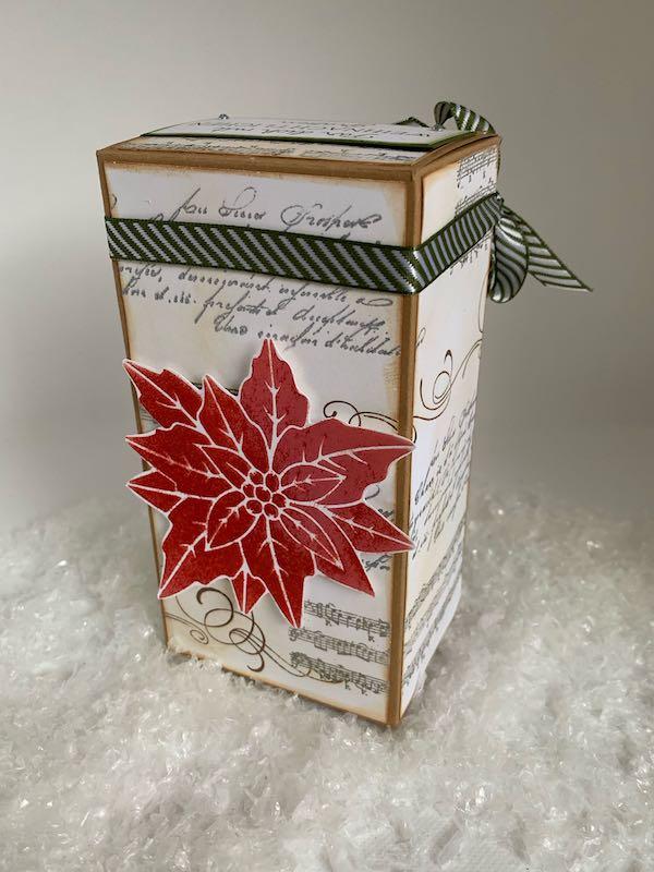 Tee-Adventkalender_Poinsettia
