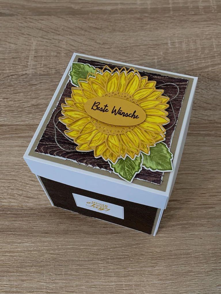 Explosionsbox_Geburtstag_Sonnenblumen_oben